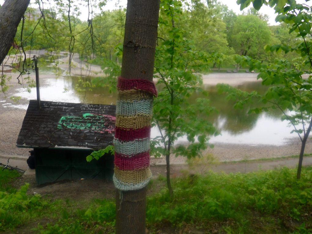 À Montréal, le tricot-graffiti fait des émules et égaye le quotidien des gens.