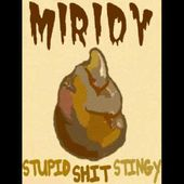 Miridy - Stupid Shit Stingy (official album teaser 2011)