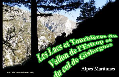 Col de GIALORGUES et LACS de l'ESTROP  - Saint-Dalmas-Le-Selvage ( Vallée de la Tinée - Alpes Maritimes )
