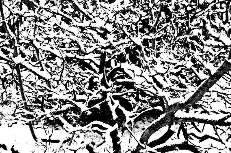 Album - Valcanville