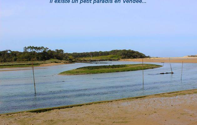 Talmont St Hilaire -suite- 6 mai 2019 - LE LAGON BLEU