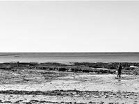 Marée basse en noir et blanc