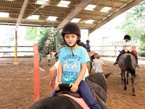 Stage équitation Comines - 30/07 au 03/08