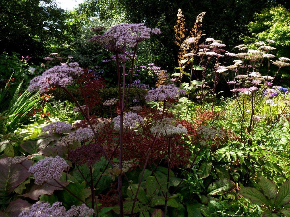 Découverte de jardins : Le jardin de Marie-Ange,
