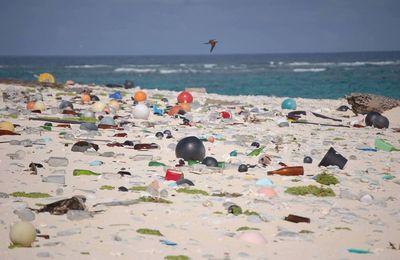 La Méditerranée en passe de devenir une mer de plastique?