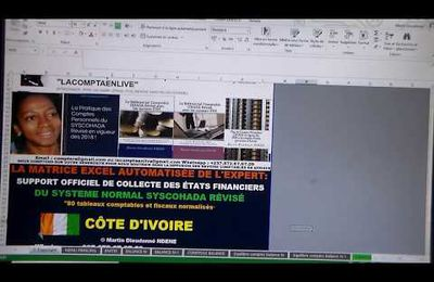 COTE D'IVOIRE : MATRICE EXCEL AUTOMATISÉE DE LA LIASSE COMPTABLE ET FISCALES NORMALISES