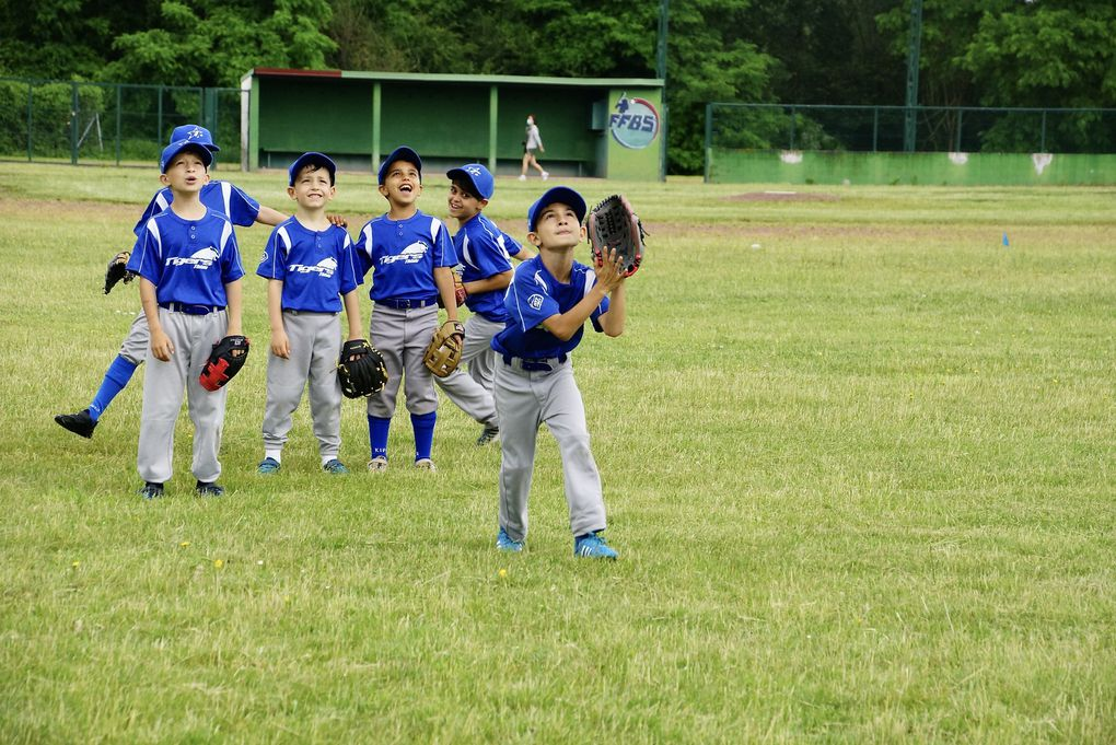 U9 - Tigers vs Cougars et French Cubs