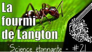 La fourmi de Langton