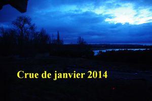 Crue de janvier 2014