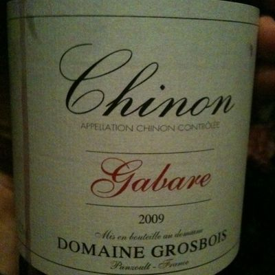 Chinon rouge, 2009 / Domaine Grosbois / Panzoult (37)