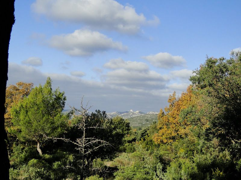 Du Parc de Pichauris, le Mont du Marseillais
