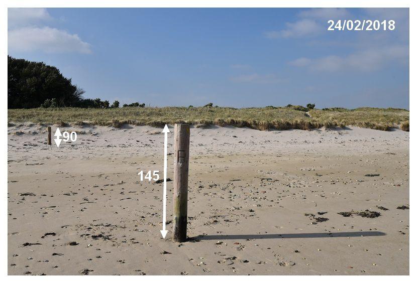 Les va et vient du sable, le trait de côte