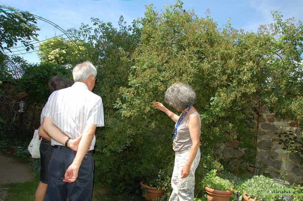 Les Jardins du Clos Joli à Brécy (02) chez Françoise Radet-Mannerkorpi le 5 juin 2010 lors des Portes Ouvertes 10 ème édition
