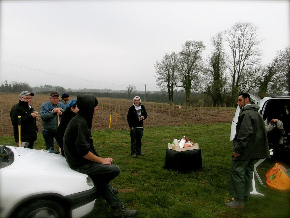 Plantation de vigne Colombard sur terrain argilo-siliceux en Mars 2012. Puis plantation de vigne Ugni-Blanc sur terrain argilo-calcaire en Avril 2012.
