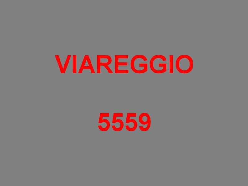 VIAREGGIO  5559 , Dragueur de mines de la marine Italienne