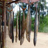 Poisson salé, séché - Noy et Gilbert en Thaïlande