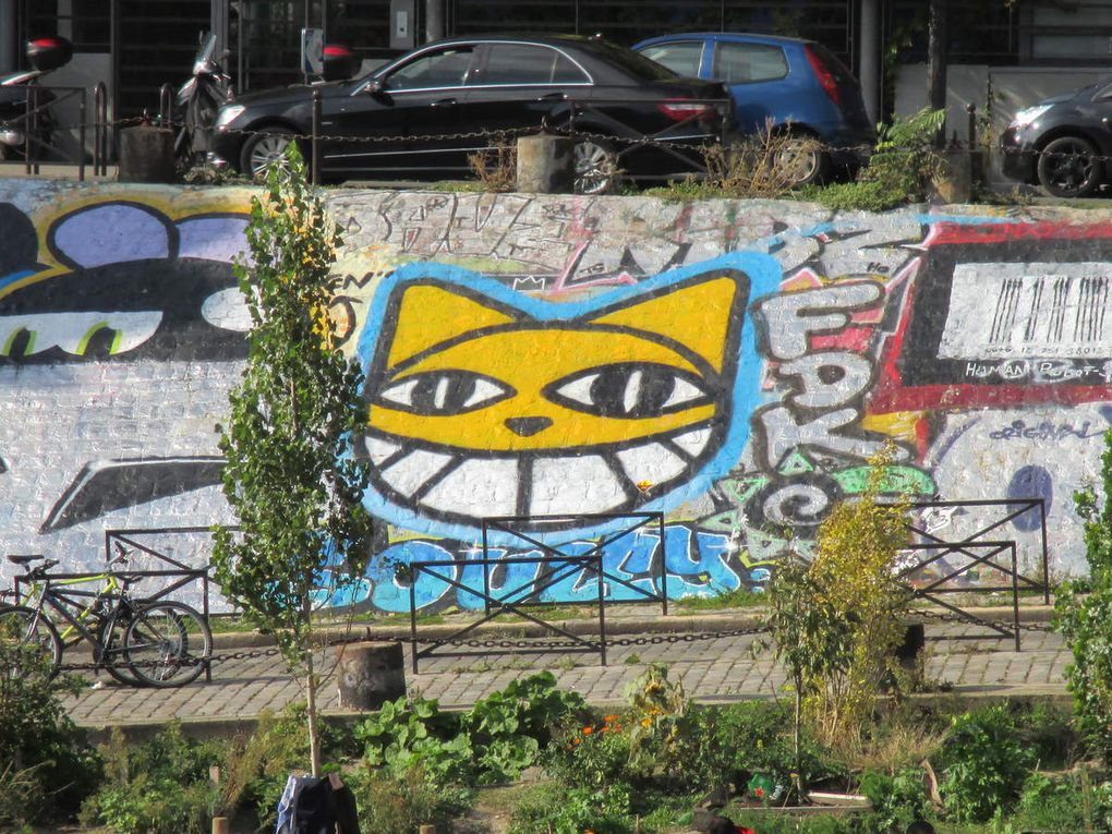 Monsieur Chat - Paris 19e