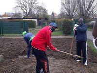 Jardin collectif de l'association Cœur du Congo : Une aventure qui commence…