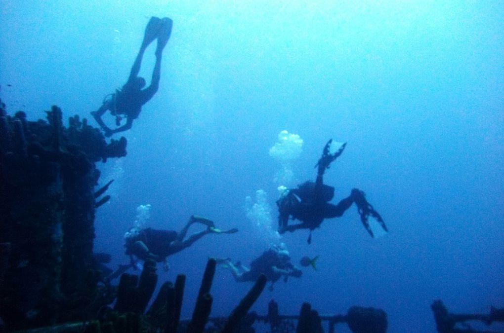 Images de plongée. Malendure, janvier 2014