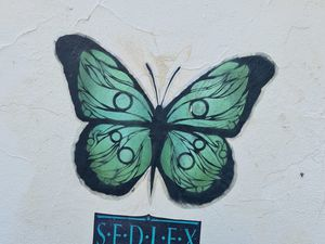 Street art Croix Rousse Lyon