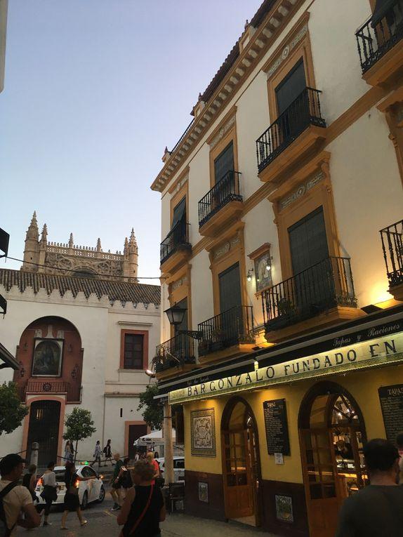 Sous le charme de SEVILLE, Andalousie  🇪🇸