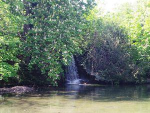 Le Lac Infériieur et sa cascade, sa faune