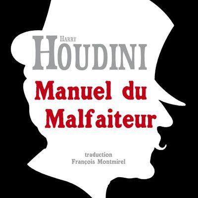 Février 2019 : Manuel du Malfaiteur