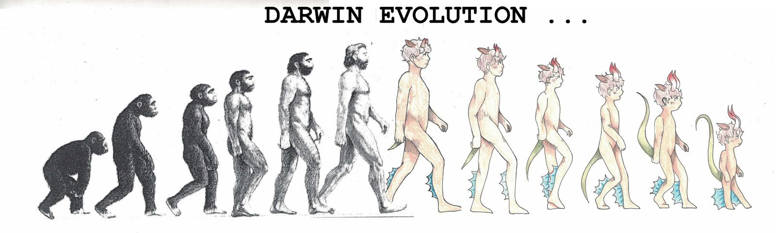 DARWIN EVOLUTION / REALISATIONS ELEVES    5e