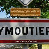 Roguidine : cueillette de myrtilles à Eymoutiers en Haute Vienne - Roguidine