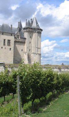Nos vacances en Poitou-Charentes et plus... #3