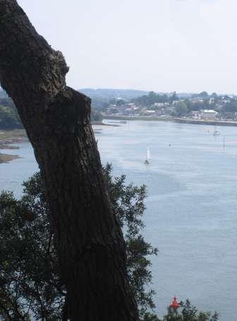 Les jardins bretons (2)