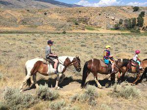 Cody - et cheval