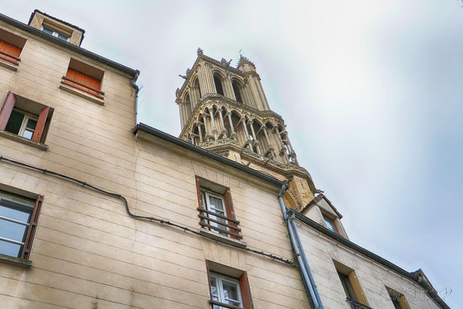 Vues de la rue du Fort (le Rive Gauche, la vigne du Clos..), et de la rue Monteclair