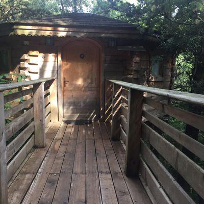 Les cabanes dans les bois