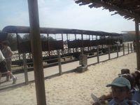 Centre Camus sortie mer de sable groupe 1 et 4 (23/07/2014)