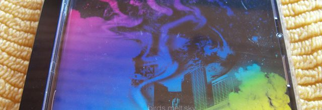 BIRDSinSPACE - birds melt sky