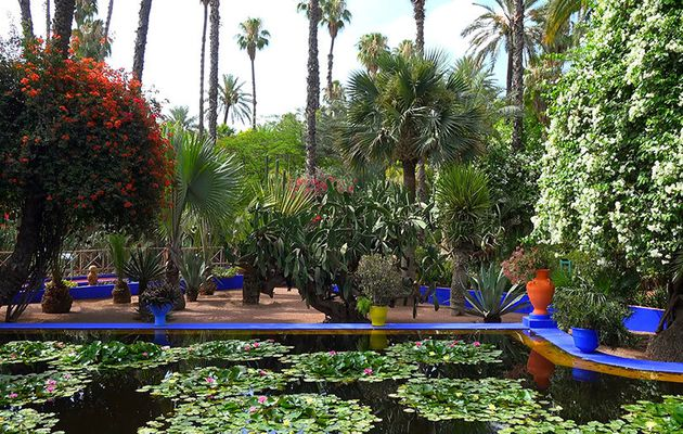 Retreat to the Beautiful Green Spaces in and Around Marrakesh
