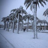 L'hiver sous les tropiques