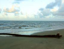 Entre sable et océan
