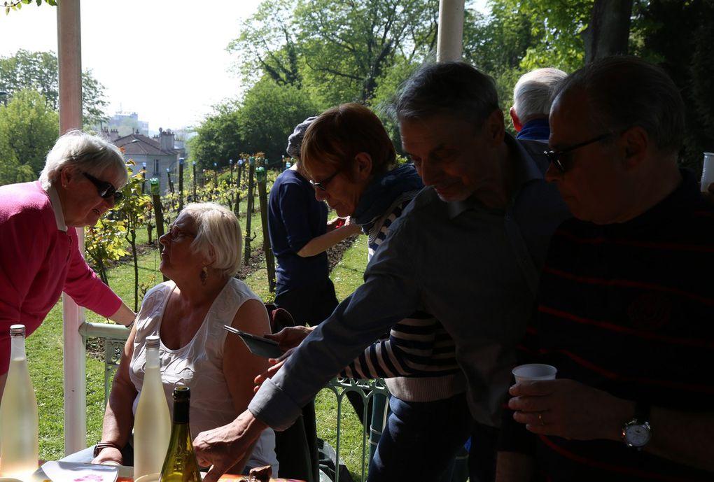 Les activités du printemps de la confrérie - Les différents travaux à la vigne