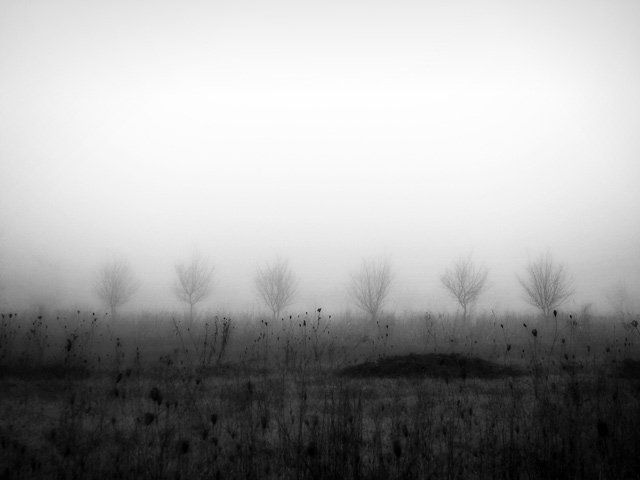 LA ROUMANIE vue par Andrei Baciu, Bucarest