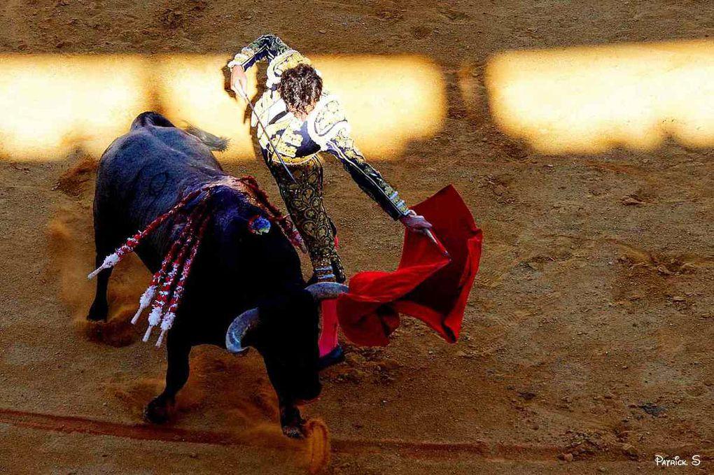 Mercredi à DAX , la corrida de l'Agur Jaunak