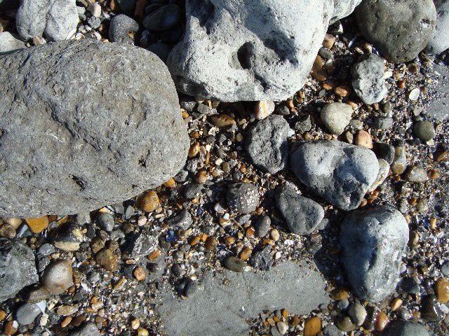 <p>Album des fossiles in situ</p> <p>Quelques pièces, généralement intransportables, et immortalisées sur leur site de découverte, seuls de rares spécimens ont été prélevés et mis en collection.</p> <p>Bonne visite !</p> <p>Phil « Fossi