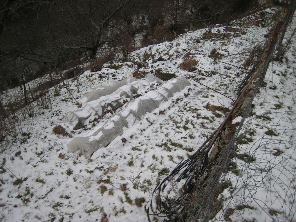 Bienvenu à Saint Michel de Chabrillanoux!!  Nous avons eu un peu de neige cet hiver, ça fait bien plaisir de revoir le voile blanc sur la montagne ardéchoise.  Les activités reprennent bientôt, stages et formations, découverte et initiation,...