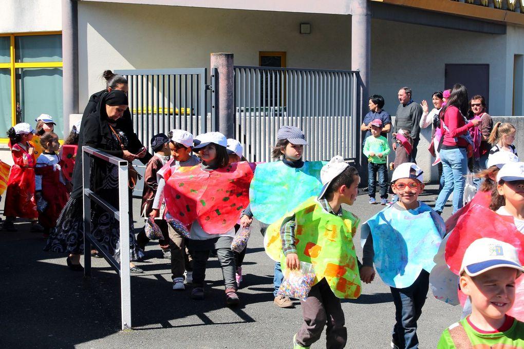ME - Carnaval 2015 : Dans les rues de Graulhet