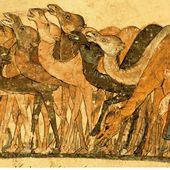 Yahya ibn Mahmud dit al-Wasiti- Dromadaires - LANKAART