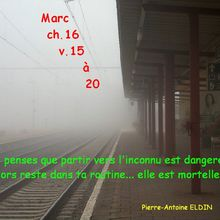 Quelques Citations