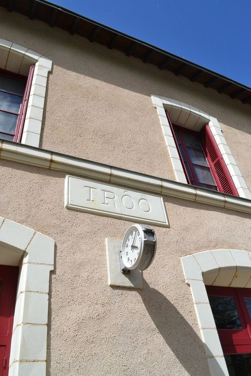 BALADE EN TRAIN TOURISTIQUE avec arrêt au musée du train miniature, puis à la gare de Montoire-sur-Loire  ou Pétain a rencontré Hitler,  arrêt sur le pont où passe la ligne TGV à l'endroit même ou le record a été battu.  Après avoir vu un TGV passer sous nos pieds à 300 km/h, sur la plateforme de Varennes, à l'endroit même un TGV a battu  à 515.3 km/h le record du monde en 1990. Et pour terminé, la boutique de produits régionaux avec une dégustation de vins pour les plus gourmets.