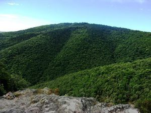 En pleine montagne.
