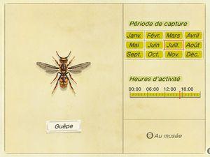 Les insectes (New Horizons) :